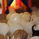 Puppies and baloons