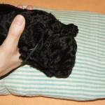 Labradoodle thermal stimulation