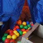 Labradoodles and balls